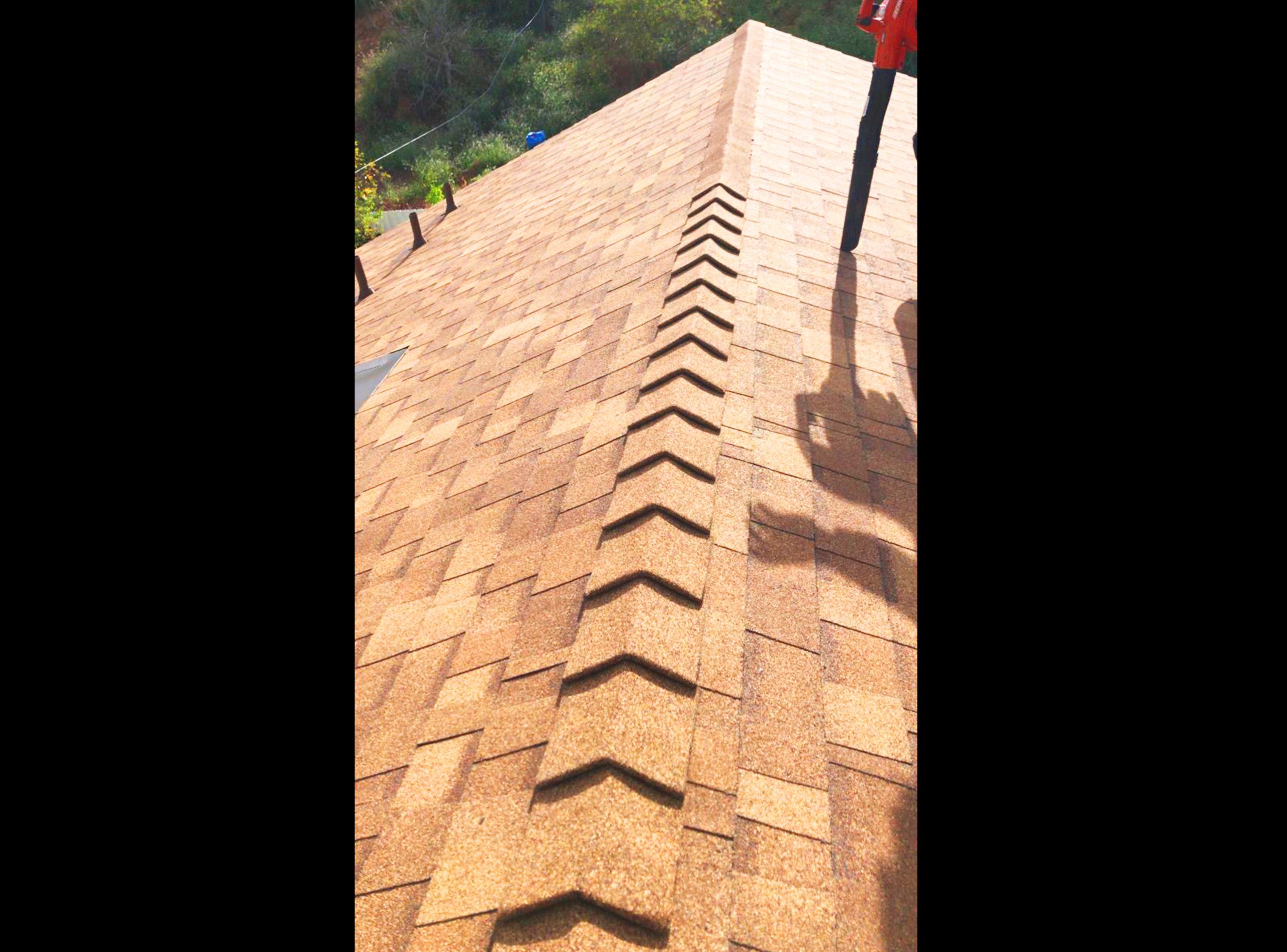 shingle roof1
