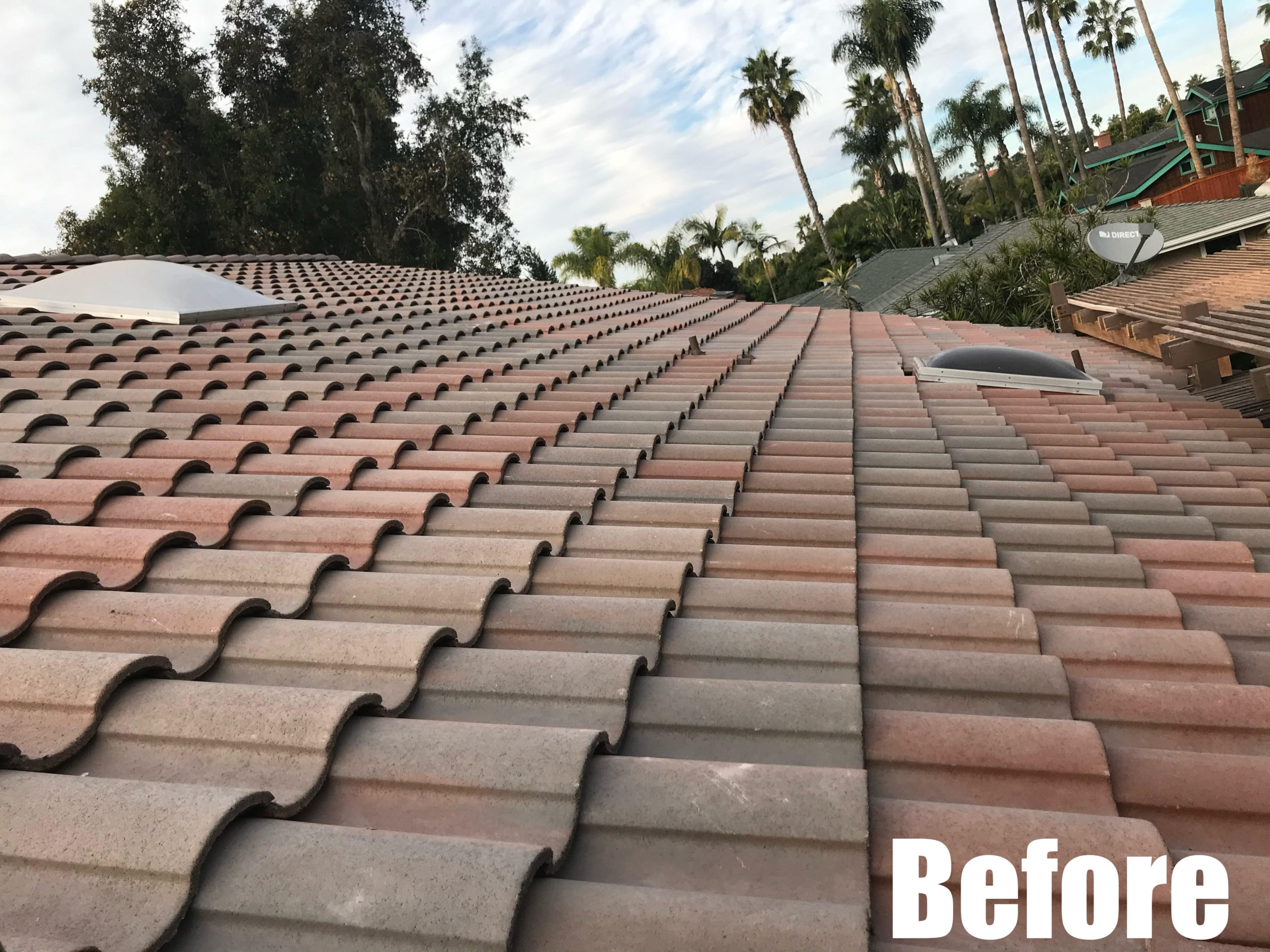tile roof-before